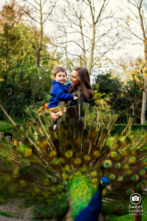 Family Photography in Holland Park, London-3